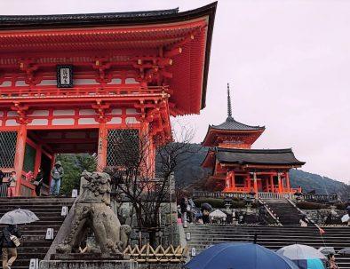 kyoto-private-tour
