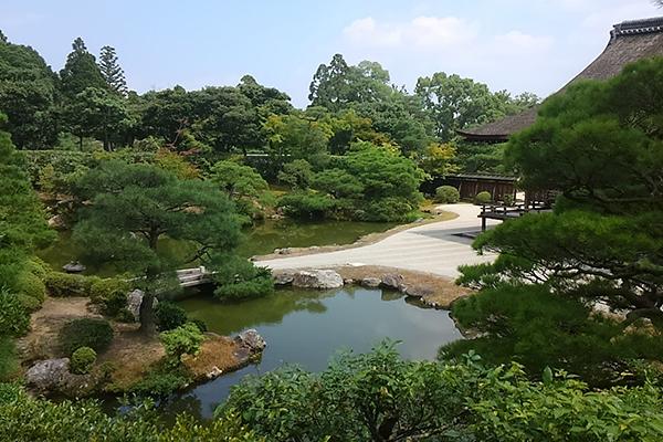 kyoto-private-tour8