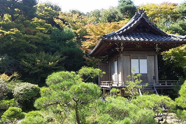 kyoto-private-car-tour7