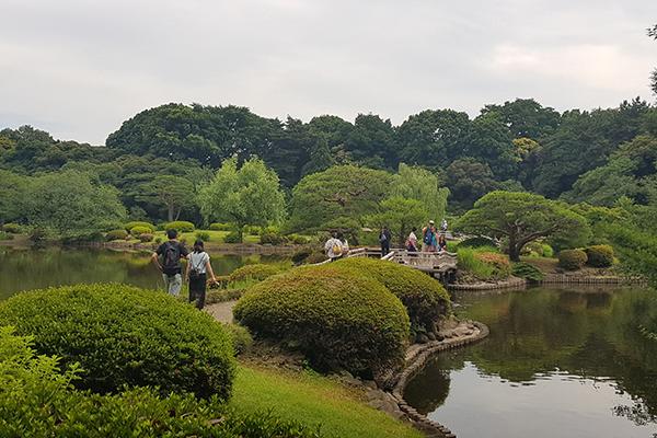 shinjuku-shibuya-tour7
