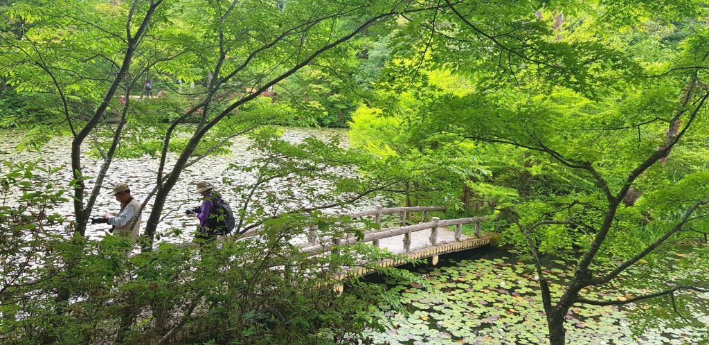 Kobe Botanical Garden