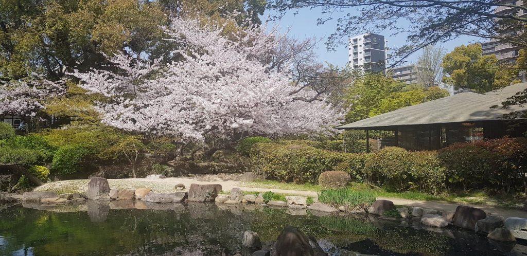 Shitennoji Gardens Osaka